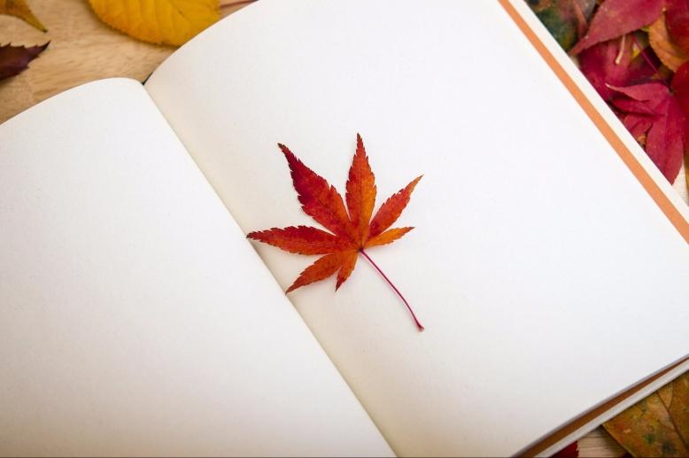 maple-leaf-638022_1920-e1496331037214.jpg